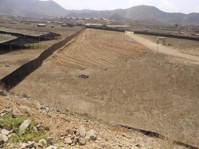 Terrenos En Pachacamac 17,500 M2 Los Manzanos